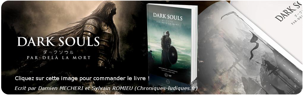 commander-livre-dark-souls